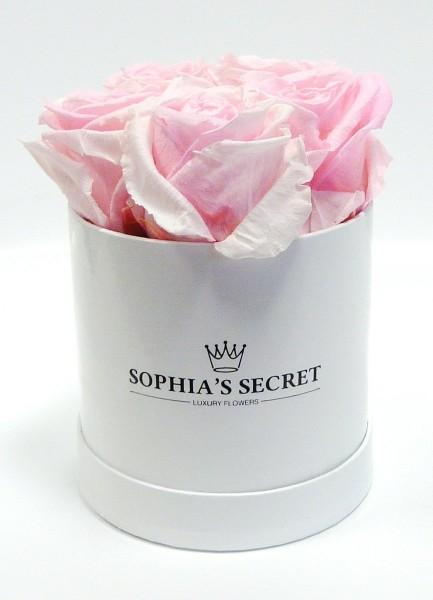 Rosenbox rund weiß Rosenfarbe rosa Ø10H14cm