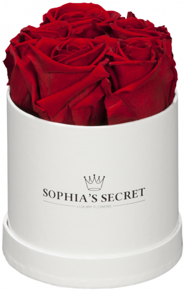 Rosenbox rund weiß Rosenfarbe rot Ø10H14cm