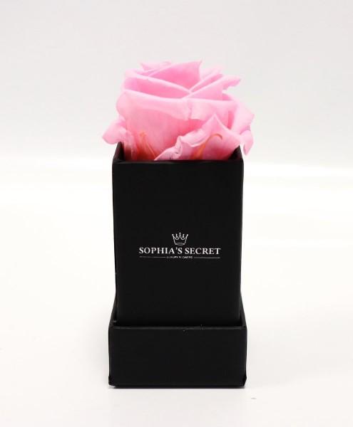 Rosenbox eckig schwarz Rosenfarbe rosa L/B4,5H13cm
