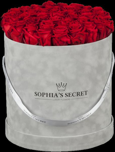 Hutschachtel Samt - Grau mit roten Rosen