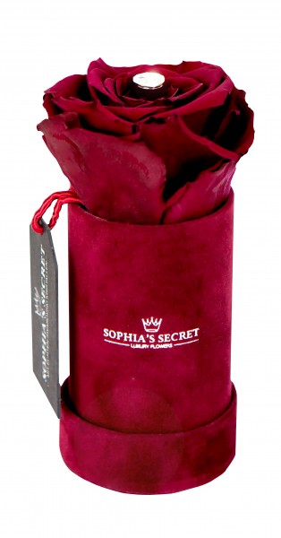 Sophia´s Secret Rosenbox rund veredelt mit einer runden Blumennadel mit Swarovski® Kristallen