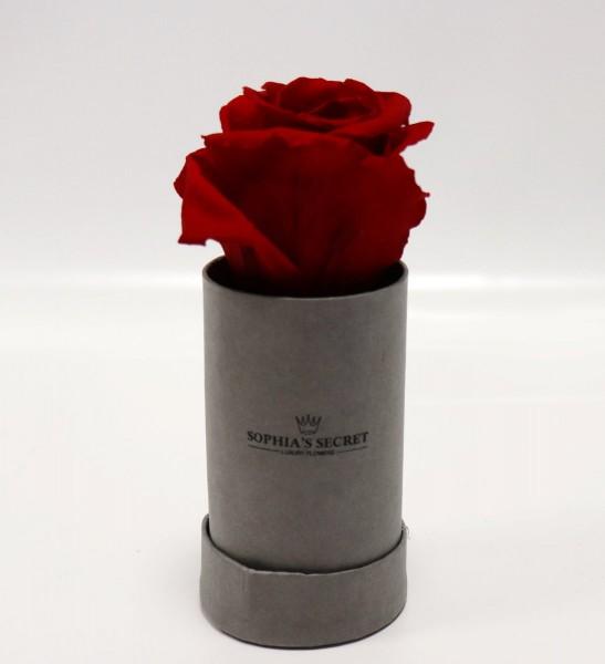 Rosenbox rund grau Rosenfarbe rot Ø5H13cm