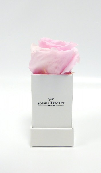 Rosenbox eckig weiß Rosenfarbe rosa L/B4,5H13cm