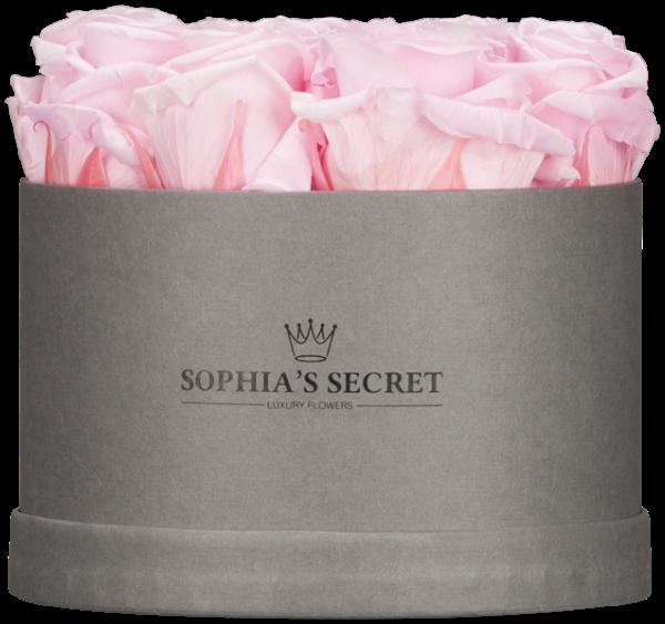 Rosenbox rund grau Rosenfarbe rosa Ø15H14cm